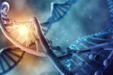 Con người có thể được tạo ra trong phòng thí nghiệm?