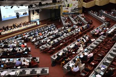 Đại hội đồng Codex quốc tế thông qua nhiều tiêu chuẩn Codex mới