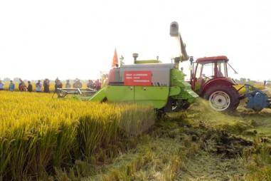 Máy gặt đập không người lái sẽ thay thế nông dân?