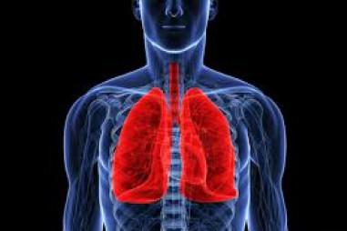 Những người thừa cân có chất béo trong… phổi