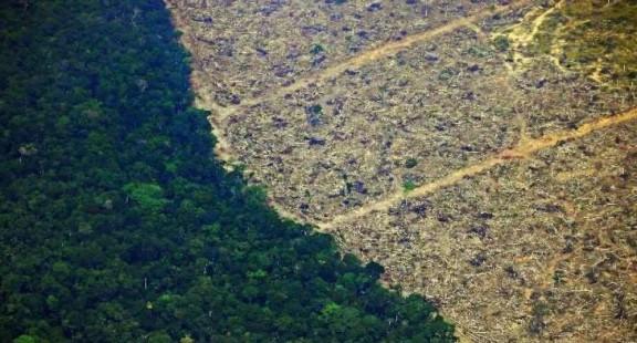 Sự ổn định của khí hậu Trái đất phụ thuộc vào rừng Amazon