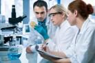 An toàn sinh học cho PTN, PXN vi sinh vật