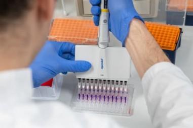 Vì sao đến nay mới nghiên cứu vaccine ngừa virus corona cho người?
