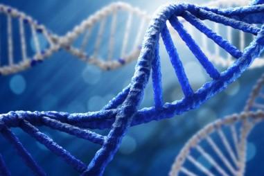 Một số gen liên quan đến bệnh đái tháo đường tuýp 2 ở nhóm người Kinh tại Việt Nam