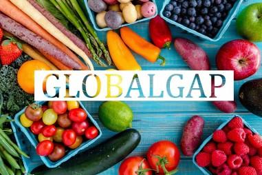 GlobalGAP giúp nông sản Việt đáp ứng tiêu chuẩn của EU