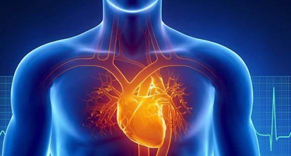 Nghiên cứu cho thấy COVID-19 cũng gây ra chấn thương cơ tim (tổn thương tim)