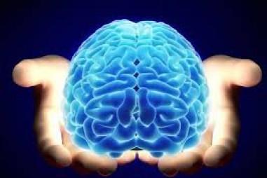 Tạo ra não người, không khó