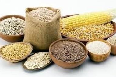 Chương trình VPT.2.5.20.166 - Chất lượng thức ăn chăn nuôi