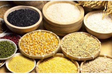 Chương trình VPT.2.5.20.167 - Chất lượng thức ăn chăn nuôi