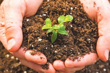 Chương trình VPT.2.5.20.168 - Chỉ tiêu chất lượng phân bón hữu cơ