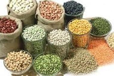 Chương trình VPT.2.5.20.211 - Chất lượng thức ăn chăn nuôi