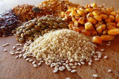 Chương trình VPT.2.6.20.112 - Vi sinh trong nguyên liệu thức ăn chăn nuôi