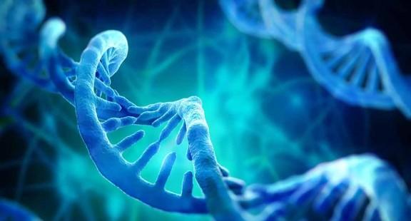 Nghiên cứu biến đổi của gen ở bệnh nhân ung thư vú người Việt Nam