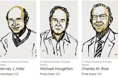 Giải Nobel Y học 2020 thuộc về ba nhà khoa học phát hiện virus viêm gan C