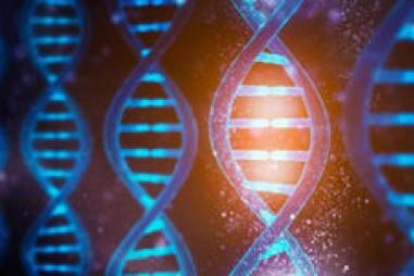 Bật/tắt chức năng ADN bằng ánh sáng