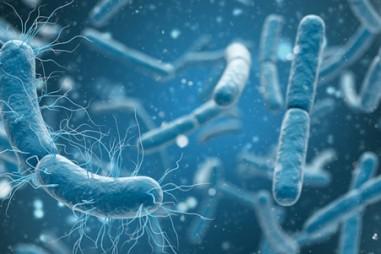 Nhóm kháng sinh mới hoạt động chống nhiều loại vi khuẩn