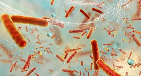 Các tinh thể nano loại bỏ màng sinh học vi khuẩn