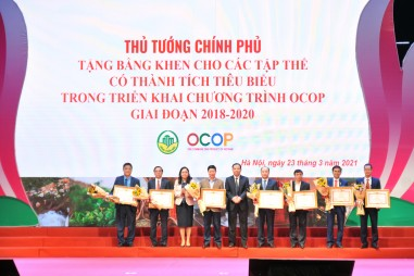 """Phó Thủ tướng Trịnh Đình Dũng: Không """"xuê xoa"""" trong đánh giá, công nhận sản phẩm OCOP"""