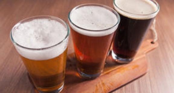 Biến chất thải bia thành nguồn protein mới