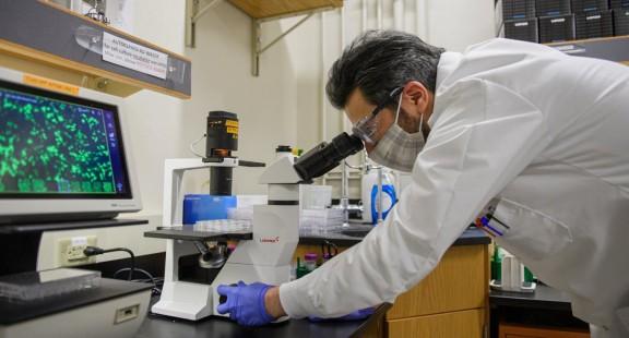 COVID-19 gây ra phản ứng tế bào