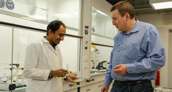 Các nhà khoa học tạo màng bao bì thực phẩm ăn được từ rong biển