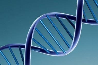 Đã có thể gắn nhãn, truy xuất các tệp dữ liệu DNA