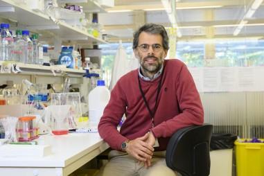 Phương pháp xác định các biến thể mới của coronavirus với chi phí thấp