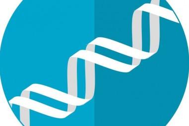 Phân lập các biến thể gen liên quan đến việc kiểm soát trọng lượng cơ thể