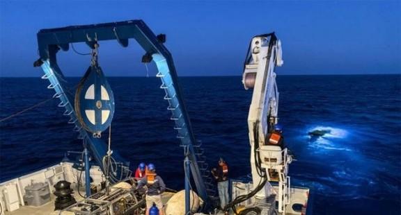 Đột phá mới: Chữa ung thư não bằng xạ khuẩn biển