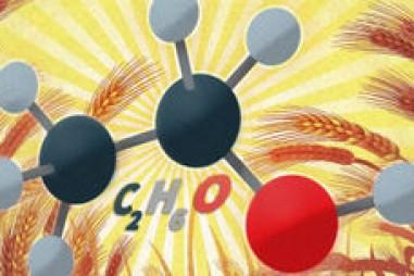 Men vi sinh thúc đẩy sản xuất nhiên liệu sinh học