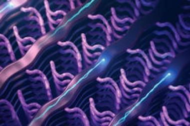 Polymer cảm biến sinh học