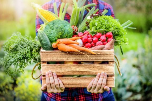 Ăn nhiều thực phẩm thực vật có thể làm giảm nguy cơ mắc bệnh tim ở thanh niên, phụ nữ lớn tuổi